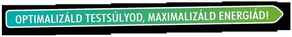 metodic logo